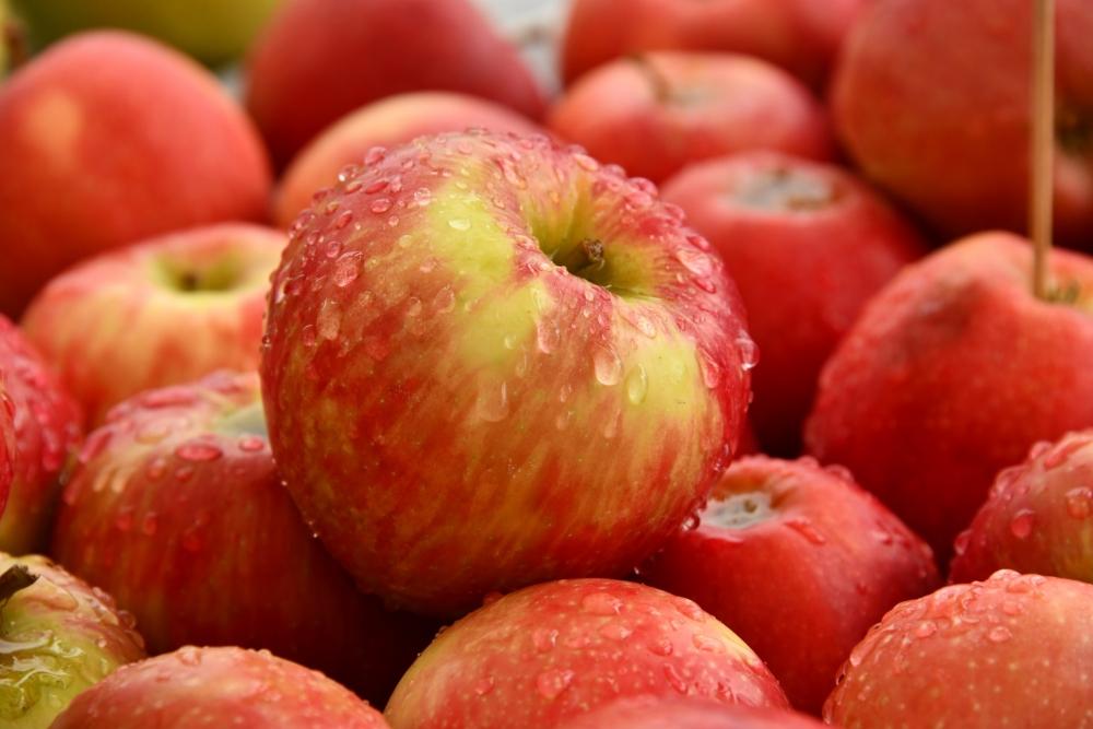 Kenali Makanan Penghancur Lemak Berikut