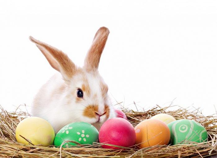 mengapa paskah identik dengan kelinci dan telur?